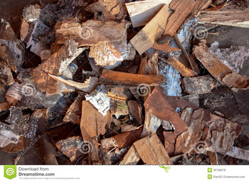 raw tree bark